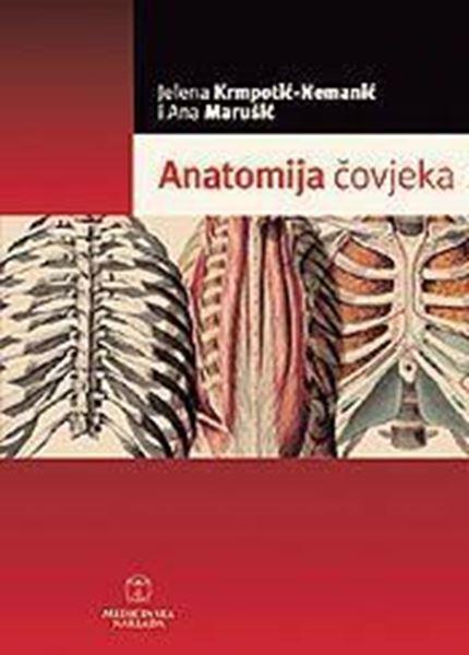 Picture of ANATOMIJA ČOVJEKA