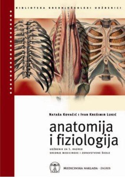 Picture of ANATOMIJA I FIZIOLOGIJA