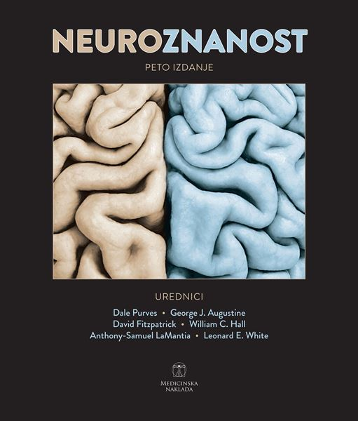 Picture of NEUROZNANOST